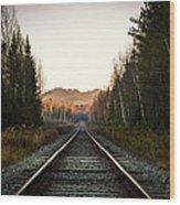Adirondack Tracks Wood Print