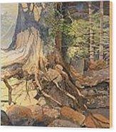 Ancient Witness II Wood Print