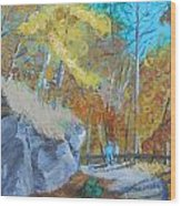 Autumn 1 Wood Print