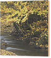 Autumn Flow Wood Print