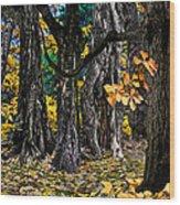 Autumn Landscape Wood Print by Vladimir Kholostykh