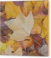 Autumn Leaves Wood Print by Hans Engbers