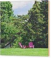Back Yard Seating Wood Print