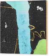 Bacterial Conjugation, Tem Wood Print