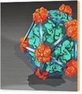 Bacteriophage Alpha 3, Artwork Wood Print