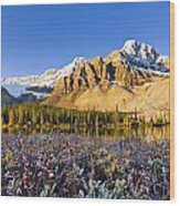Bow Lake And Crowfoot Mountain Wood Print
