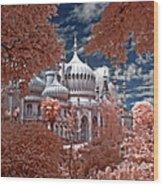 Brighton Pavilion Wood Print