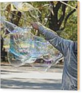 Bubble Boy Of Central Park Wood Print
