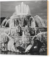 Buckingham Fountain Wood Print