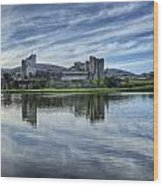 Caerphilly Castle Wood Print