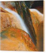 Caldeira Velha Park Wood Print