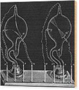 Cathode Ray Tubes Wood Print