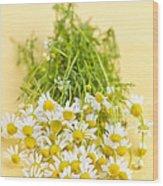 Chamomile Flowers Wood Print