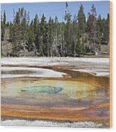 Chromatic Pool Hot Spring, Upper Geyser Wood Print