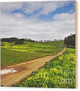 Countryside Landscape Wood Print