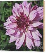 Dahlia Named Lauren Michelle Wood Print