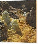 Dallol Geothermal Area, Danakil Wood Print