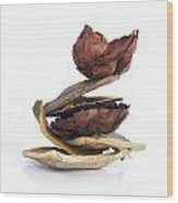 Dried Pieces Of Vegetables.  Wood Print