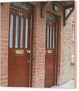 Dublin Doors Wood Print