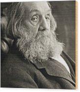 Edward Everett Hale Wood Print