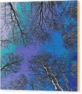 Epping Forest Art Wood Print