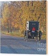 Fall Buggy Wood Print