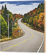Fall Highway Wood Print by Elena Elisseeva