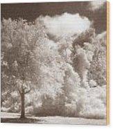 Park Place Wood Print