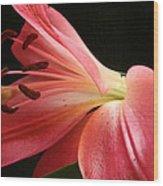 Floral 0039 Wood Print