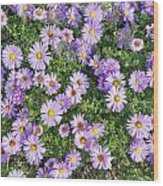 Floral Background Wood Print