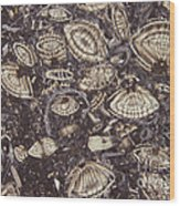 Foraminiferous Limestone Lm Wood Print by M. I. Walker