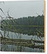 Forest Lake Wood Print