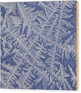 Frost On A Window Wood Print