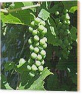 Green Grape Bunch Wood Print