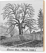 Hartford: Charter Oak Wood Print