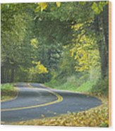 Historic Columbia River Highway Wood Print by Alan Majchrowicz