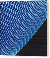 Hover Fly Eye, Sem Wood Print by Susumu Nishinaga