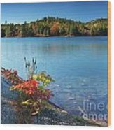 Killarney Provincial Park In Fall Wood Print