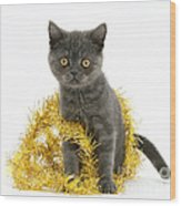 Kitten With Tinsel Wood Print
