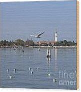 Lagoon. Venice Wood Print