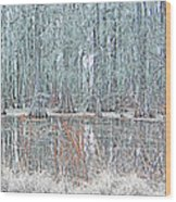 Lake Martin Swamp Wood Print
