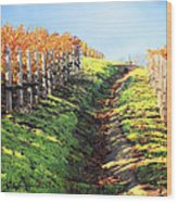 Late Autumn In Napa Valley Wood Print