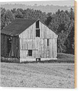 2 Line Barn 15087b Wood Print