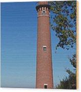 Little Sable Point Lighthouse Wood Print