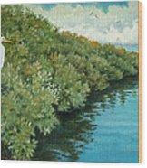 Mangroves 2 Wood Print