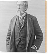 Mathew Brady, Father Of Photojournalism Wood Print