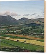 Mourne Mountains, Co. Down, Ireland Wood Print