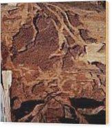 Natural Carvings Wood Print