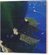 North Seawall At Low Tide Wood Print