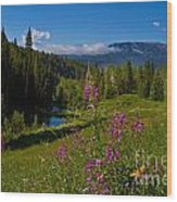 Ohio Creek Valley Colorado Wood Print